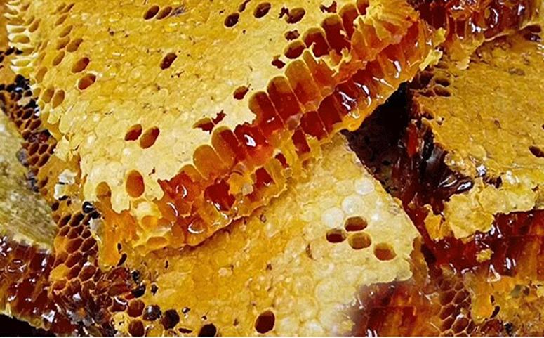天然土蜂巢蜜图片