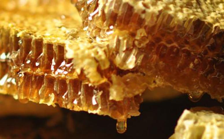 蜂巢蜜的作用与功效图片