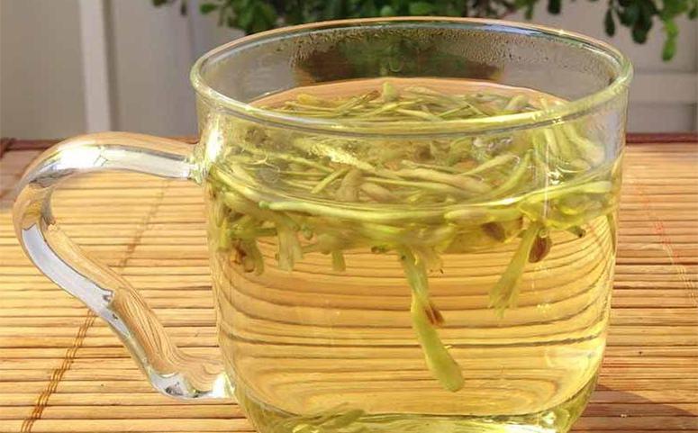 蜂蜜金银花茶增强免疫力的作用图片