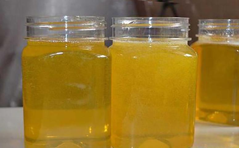 柑橘蜜多少钱一斤图片