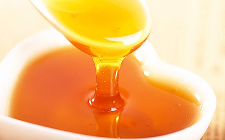 桉树蜜的产量有多高介绍图片
